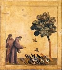 Francis (of Assisi), confessor